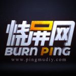 Profile picture of burnping